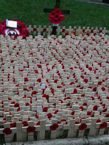 Poppies decorate the memorials in the Field of Remembrance outside London's Westminster Abbey for Remembrance Day, 2002.