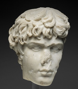 Fragment of a Portrait Head of Antinous, mid-2nd century A.D. Roman. Gift of Mrs. Charles L. Hutchinson.