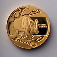 The 1/2oz 2010 coin, one of the gold coins within the Endangered Wildlife Trust Rhino Gold set.