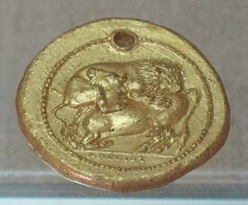Gold cast of a tetradrachm from Akanthos. Photograph: KW.