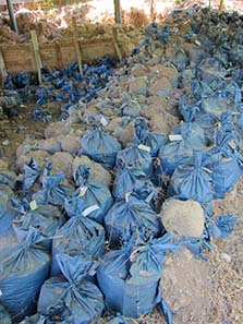 Carefully labeled bags with soil. Photograph: KW.