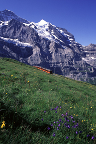 Jungfraubahn between Eigergletsch and Kleine Scheidegg, 2006. Photo: Peter Alder / Wikipedia.